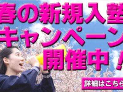 【新規塾生募集】春の入塾キャンペーン5月末まで延長します!